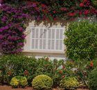 Mallorca - Natürlicher Fensterrahmen