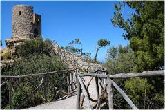 Mallorca - Nr.14 - Torre del Verger