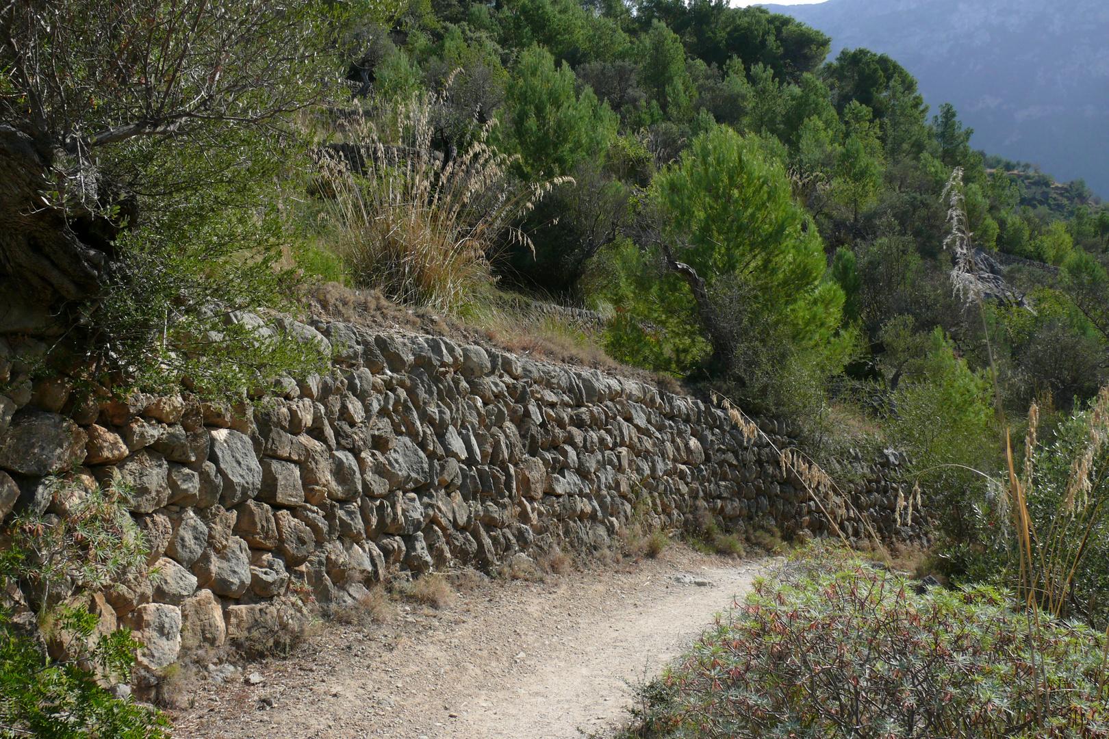 Mallorca wandern 7