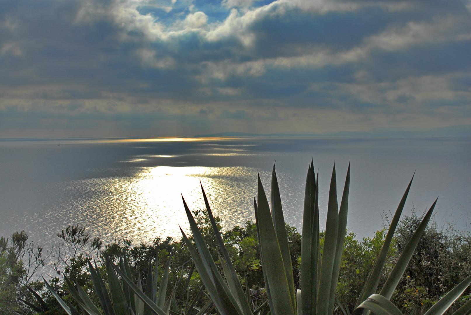 Mallorca#3