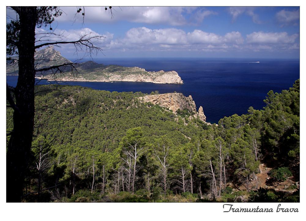 Mallorcas wildes Gebirge