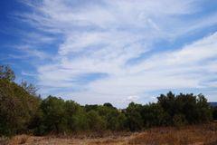 Mallorcawetter