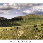 Malloresk (2)