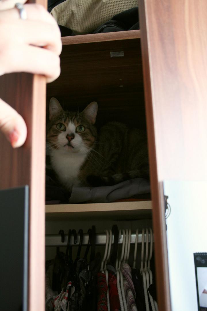 Mama, da ist ein Monster in meinem Schrank