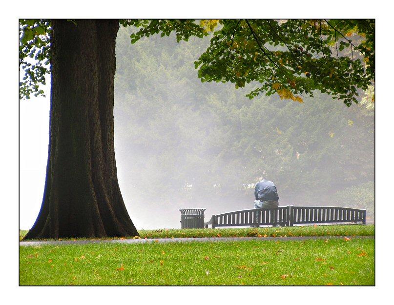 Man on park-bench, early sundaymorning