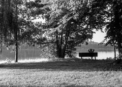 Man sitting on a bench by the lake