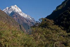 Manapati 6.380 m