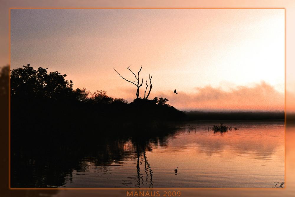 Manaus 2009
