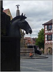 Manche Pferde ...