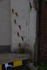 Manchmal könnte man die Wände hochgehen...##2012##