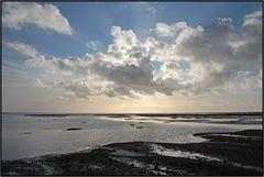 Mandø | tidal marshes | #2