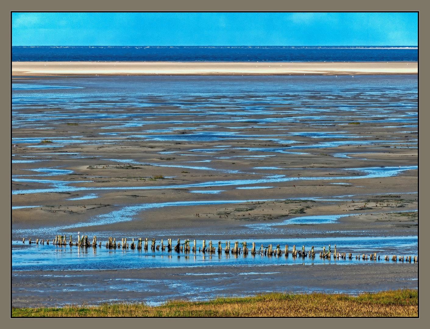 Mandø Wattenmeer