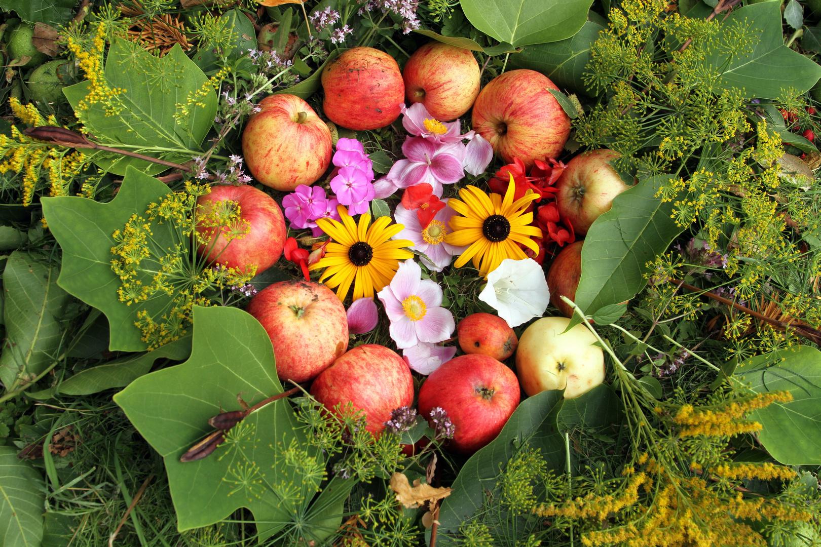 Mandala mit Blüten und Äpfeln