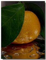 Mandarina...para Julio.