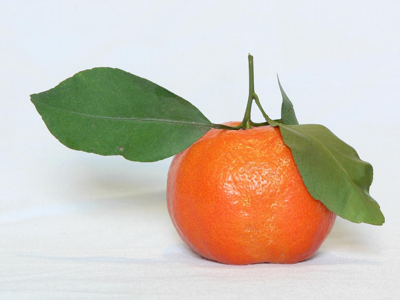 Mandarinas por aquí, por favor