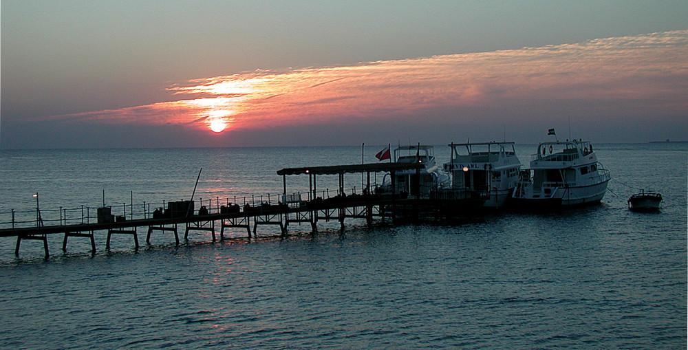 Mangrove Bay, Early Morning