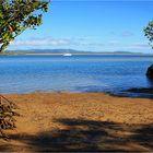 ** Mangroves Beach 1770 **