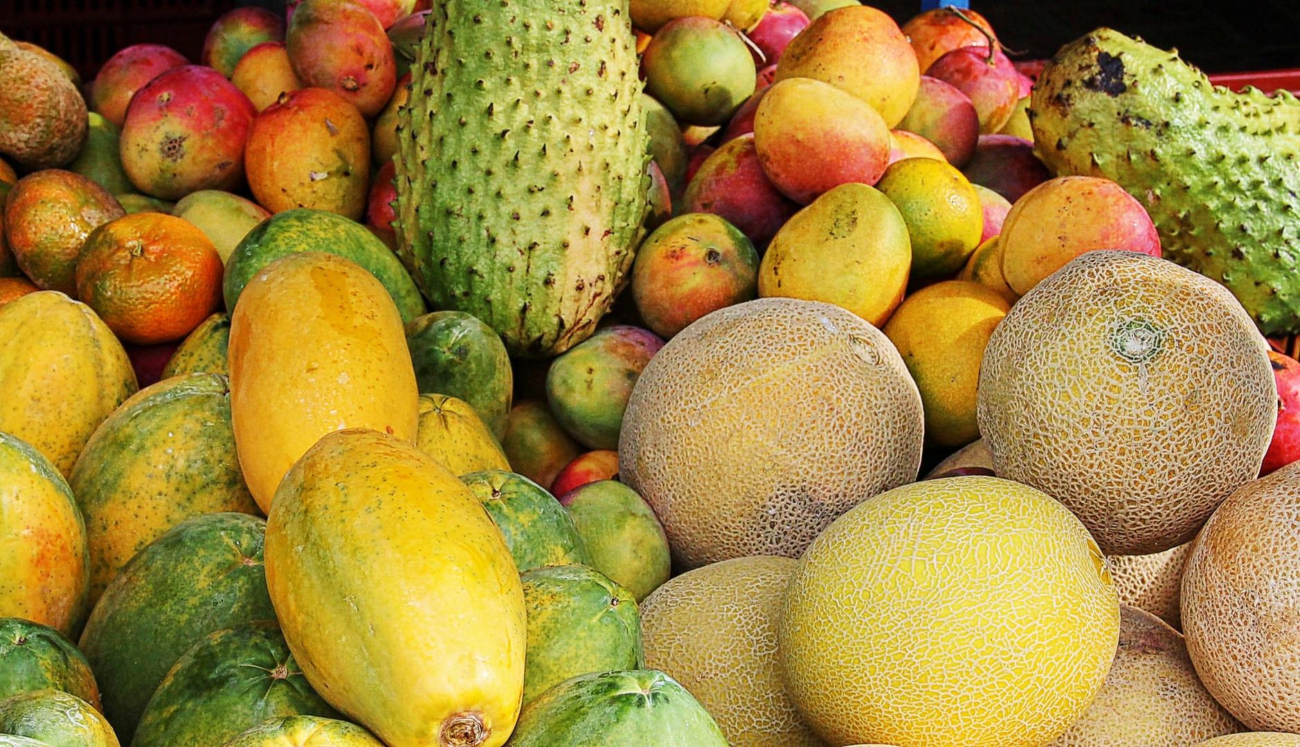mangues et melons