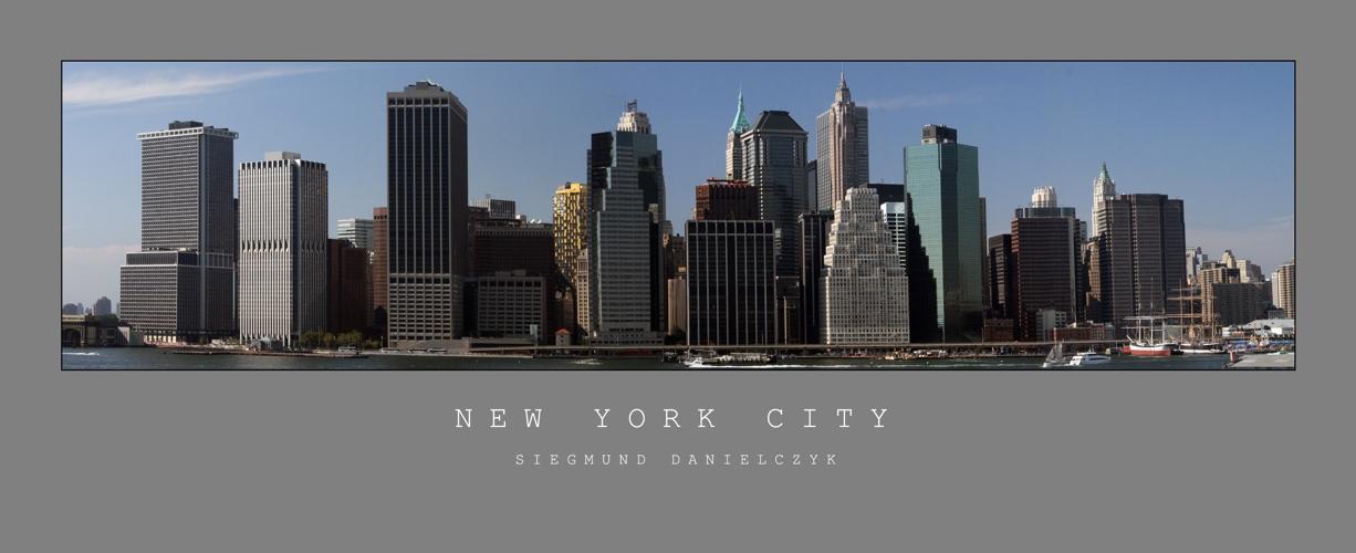 Manhattan Downtown Panorama