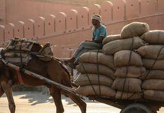 Mann auf Wagen India