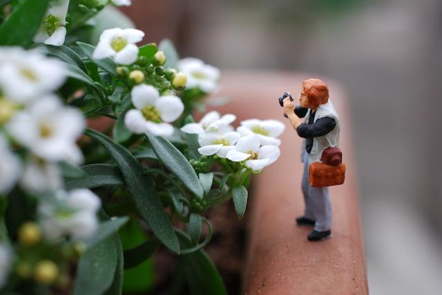 Mann beim Fotografieren :)