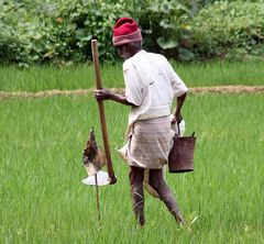 Mann rote Muetze worksongs Sri Lanka