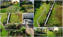 Mannheim Stadtmitte - ein Dachgarten