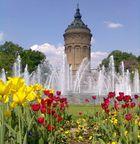 Mannheimer Wasserturm - Bild 2