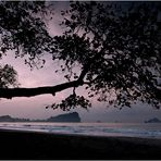 [ Manuel Antonio National Park ]