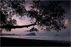 [ Manuel Antonio National Park ]