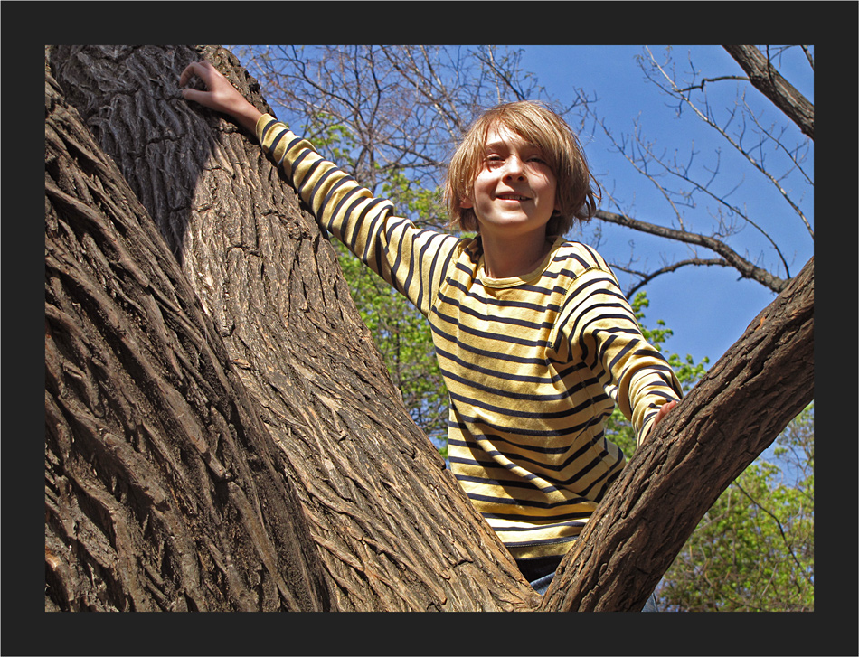 Manuel auf dem gleichen Baum