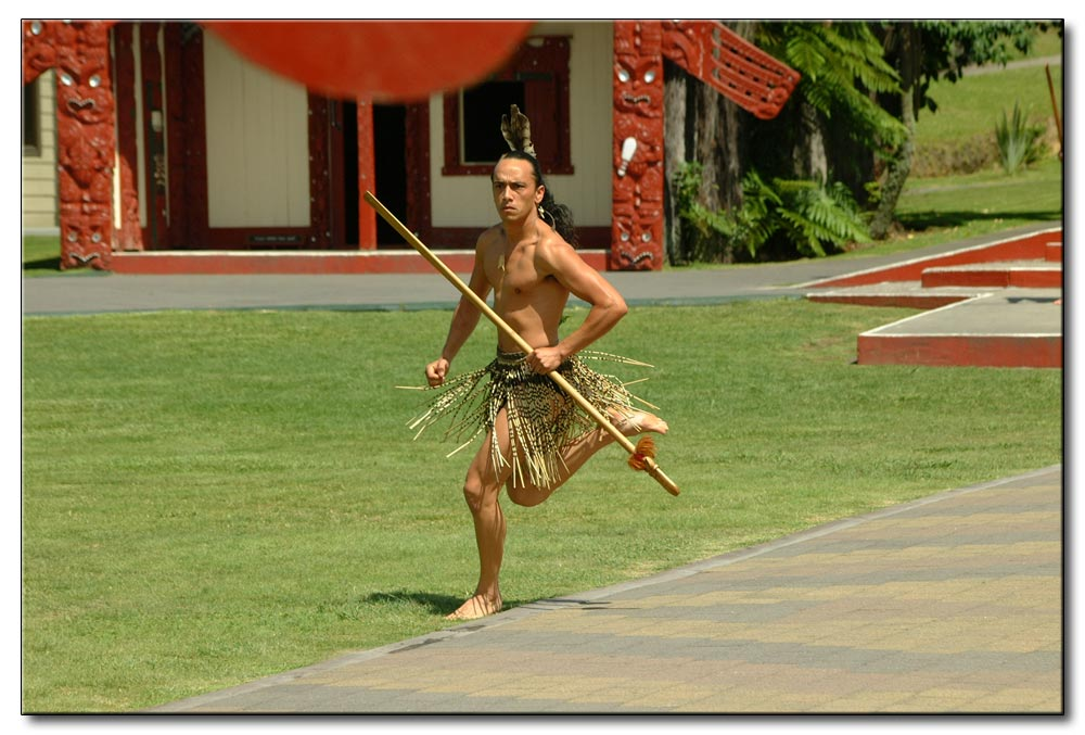Maoristreiter-1