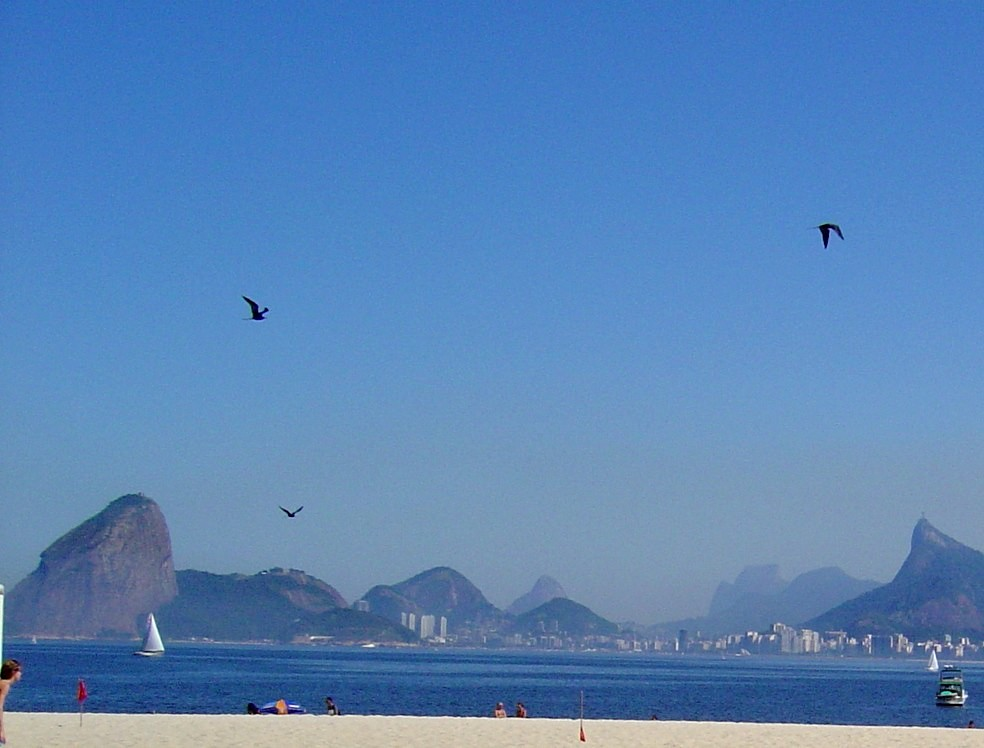 Mar, barcos e gaivotas.