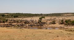 Mara-Crossing