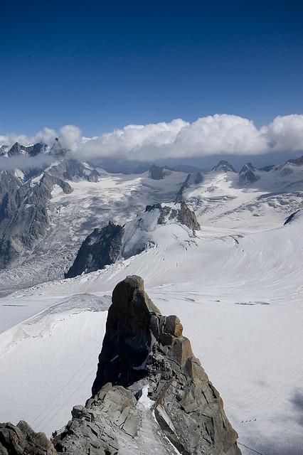 Maravilla alpina