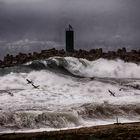 Mare d inverno -  (in copertina)