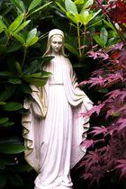 Maria zwischen den Sträuchern