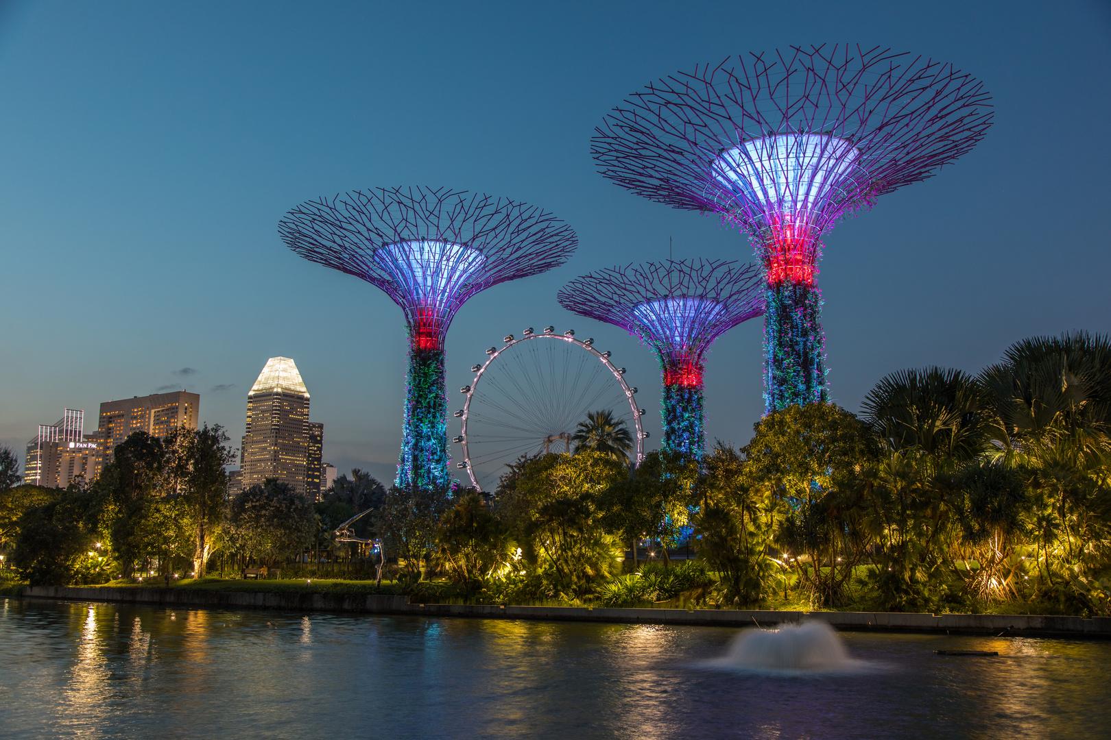 Marina Bay Park @ Night