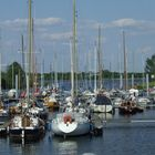 Marina de Munsterse Speije (Maas)