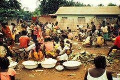 market place Akula