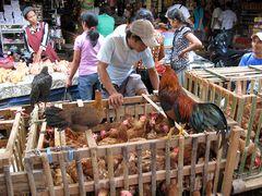 Markt im Toraja Land