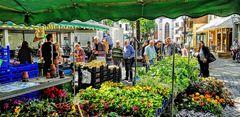 Markttag in Kempen