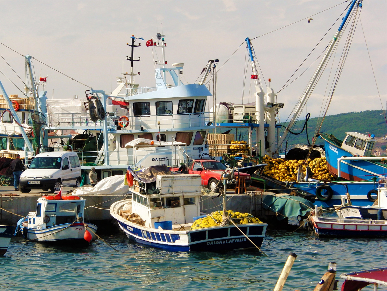 Markttreiben im Hafen