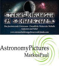 Markus Paul75