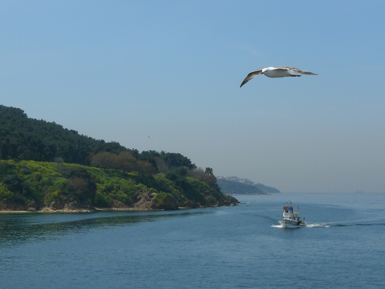 Marmara Sea