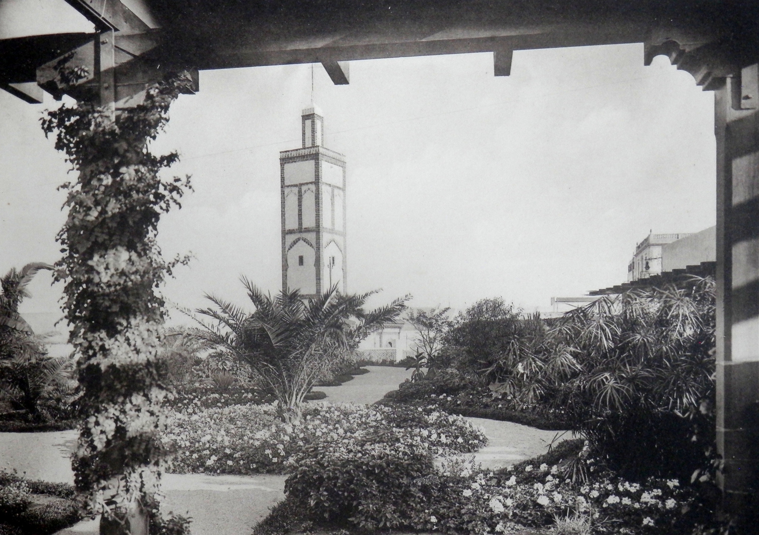 Maroc - 1920 (167)