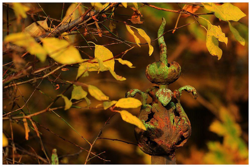 Marodes im Herbst...