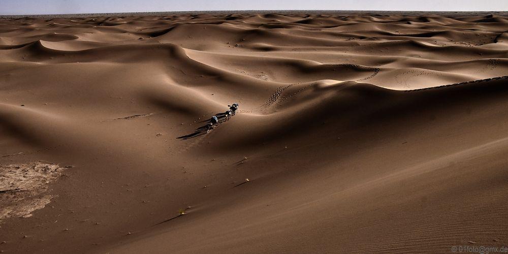 marokko-15-2_133