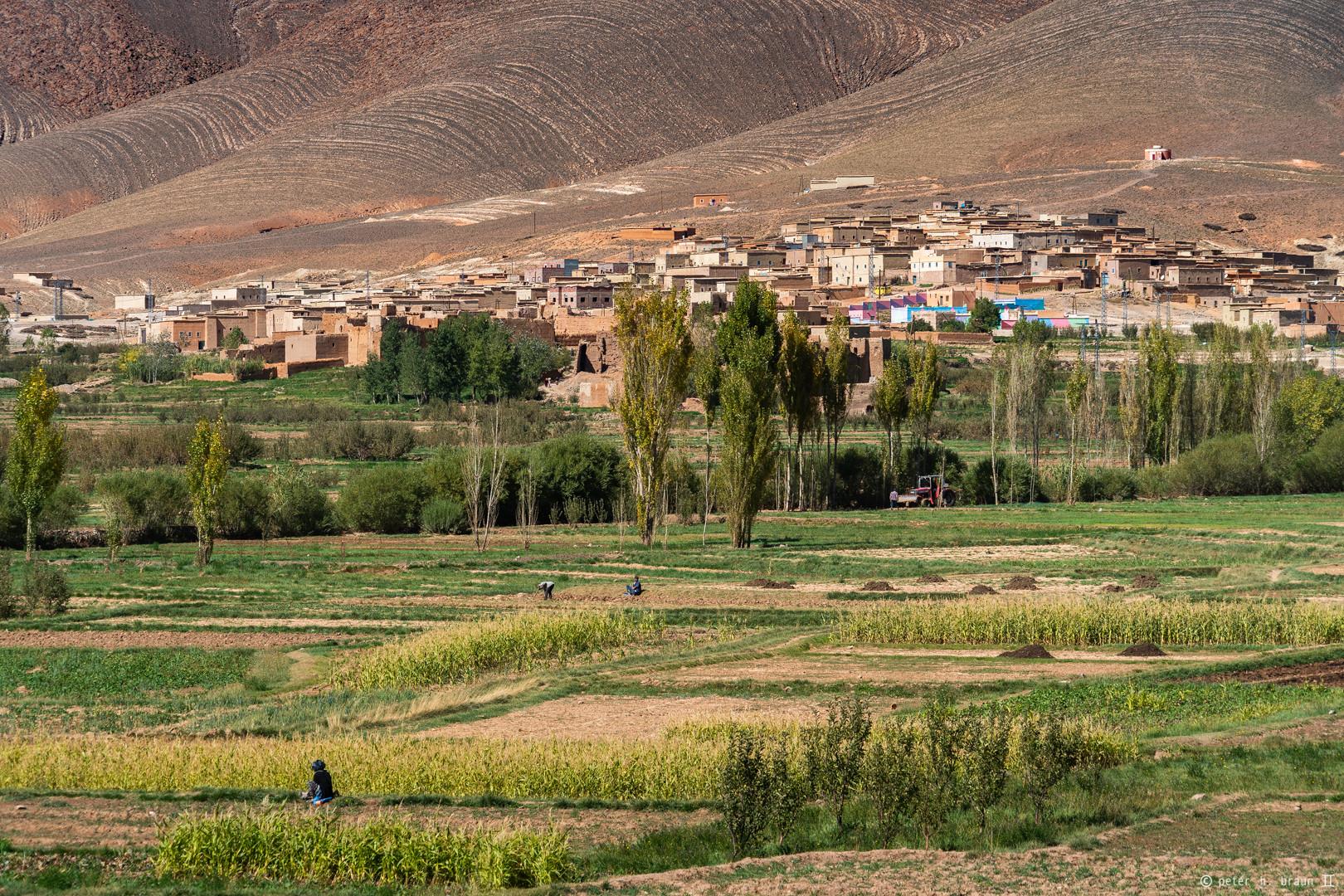 Marokko -Die Menschen #13
