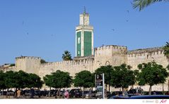Marokko: Meknes Bild 13